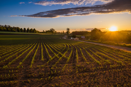 Compatibility of Agricultural Management Practices and Types of