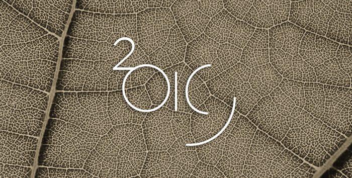 Toute l'équipe du CASD vous souhaite une excellente nouvelle année !